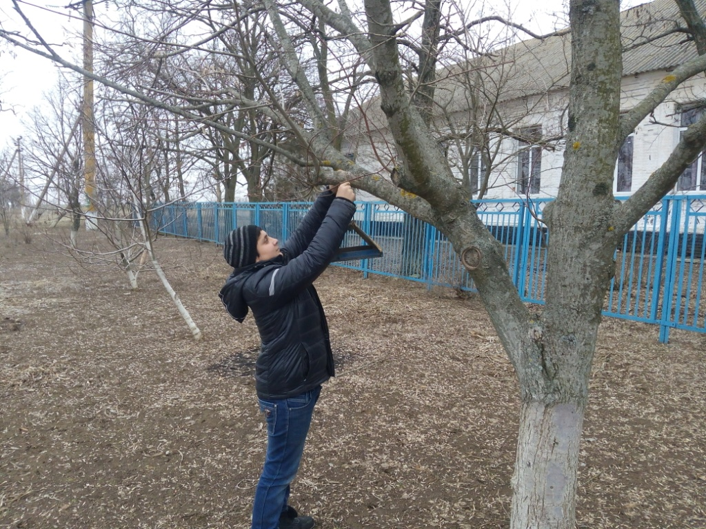 http://ivanivka-osvita.ucoz.ru/3/19/IMG_20190208_135603.jpg